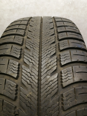 Riepas R-16-205-55-GoodYear Eagle Vector (5.5mm)
